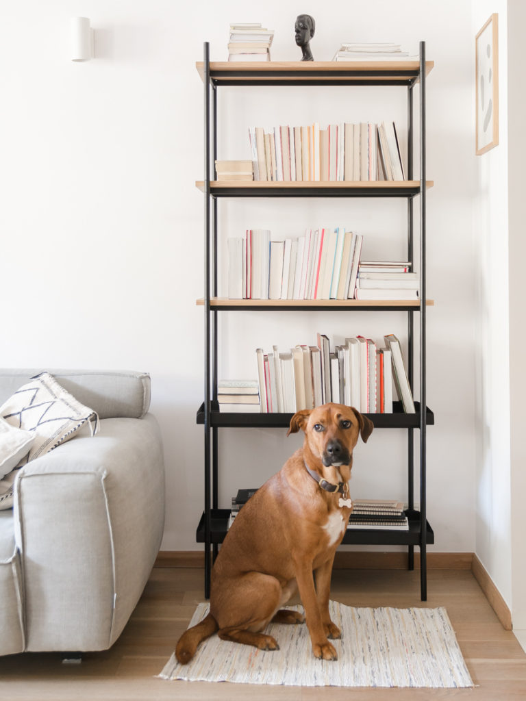 Bookcase Mleko Shelving System